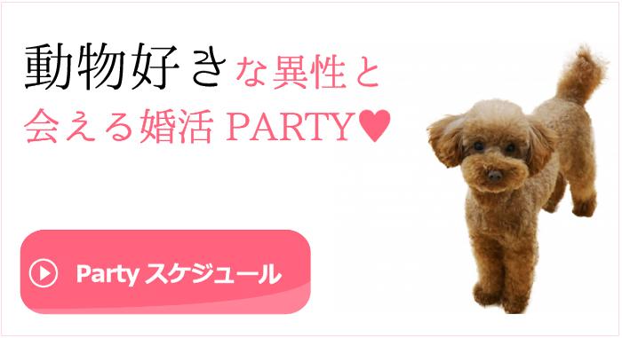 動物好きと出会える婚活・お見合いパーティースケジュールはこちら