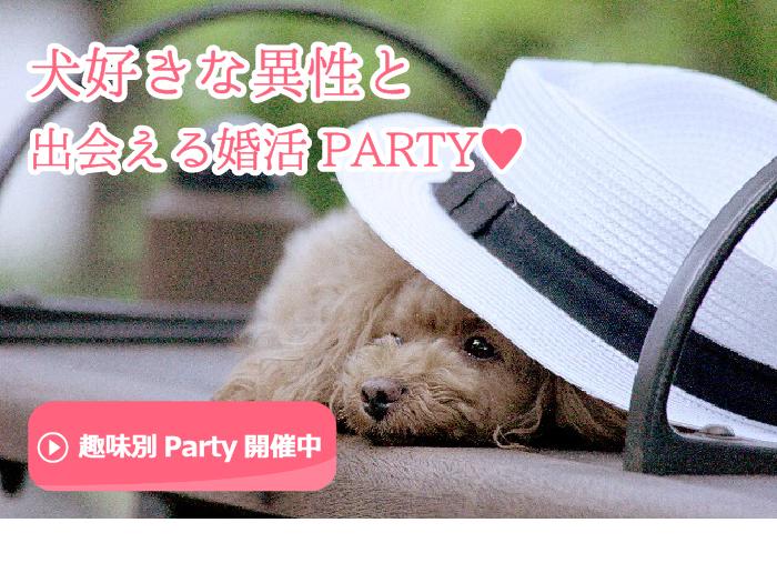 犬好きな異性と出会える婚活・お見合いパーティーのご案内です。