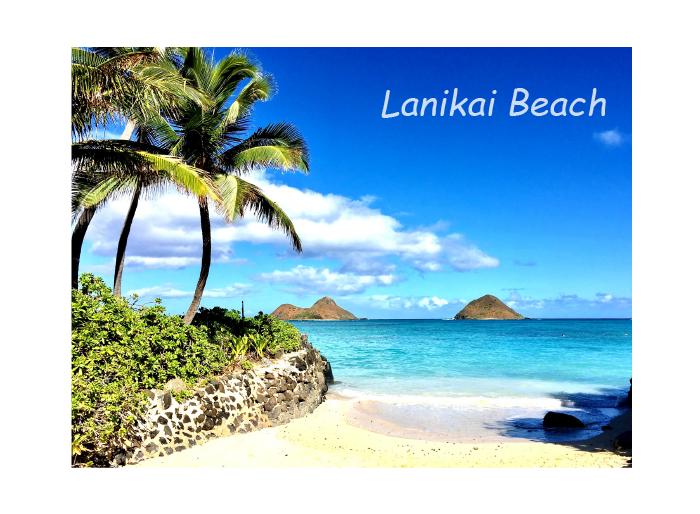めちゃくちゃ楽しいハワイ好きの婚活