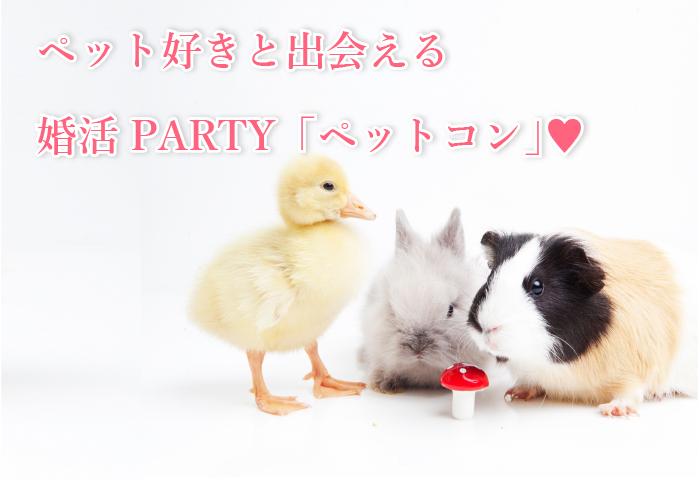 ペット好きな異性と出会える婚活・お見合いパーティー!ペットコン